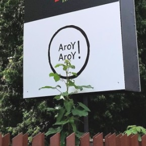 Aroy Aroy - nowe tajskie na Saskiej Kępie