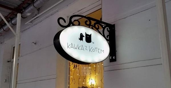 kawka-z-kotem-20170103