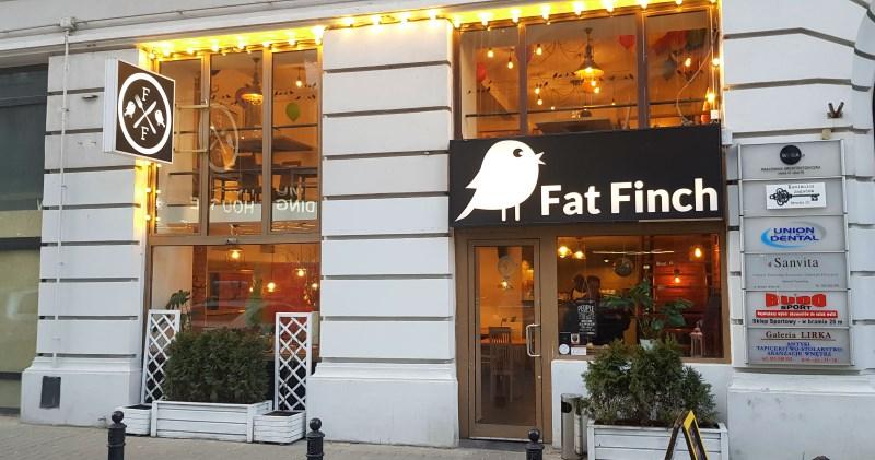 Fat Finch